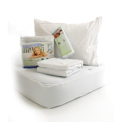 protect a bed pillow covers