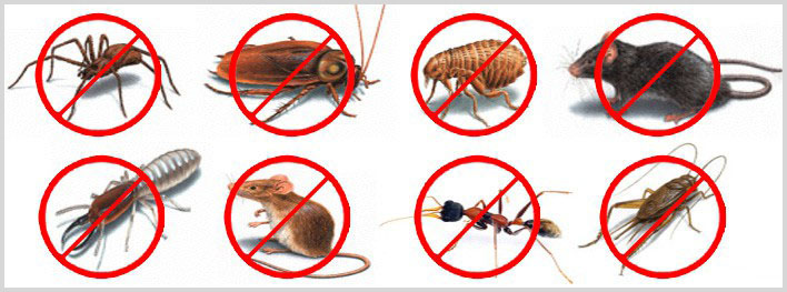 Image result for pest-control