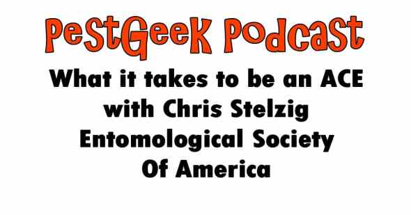 be an ACE with Chris Stelzig Entomological Society Of America