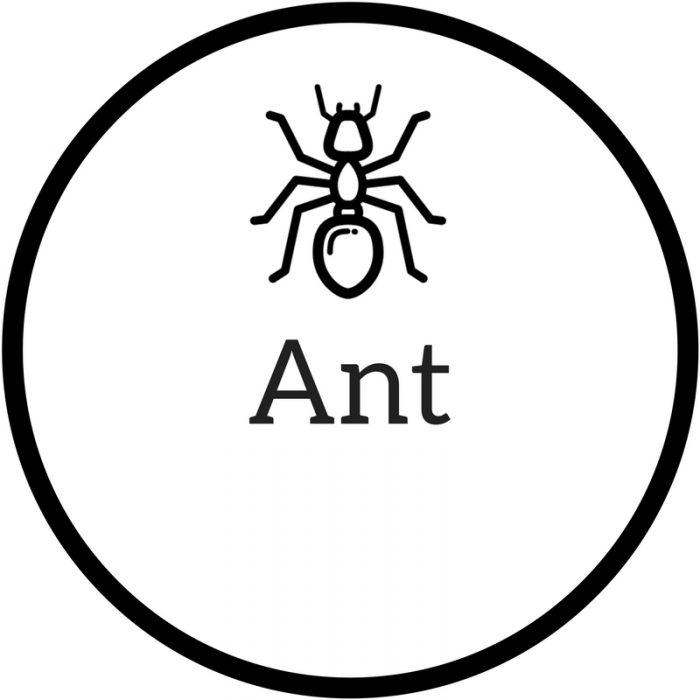 - Pest Survival Guide
