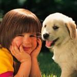 Children And Pet Death
