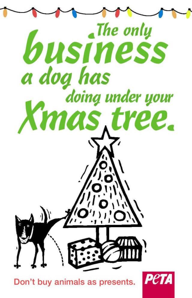 Christmas Companion Animals PSA