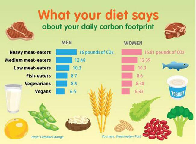 Fight Climate Change With Diet Change   PETA