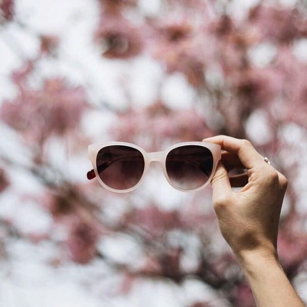 Peach Thelma Sunglasses by Triwa