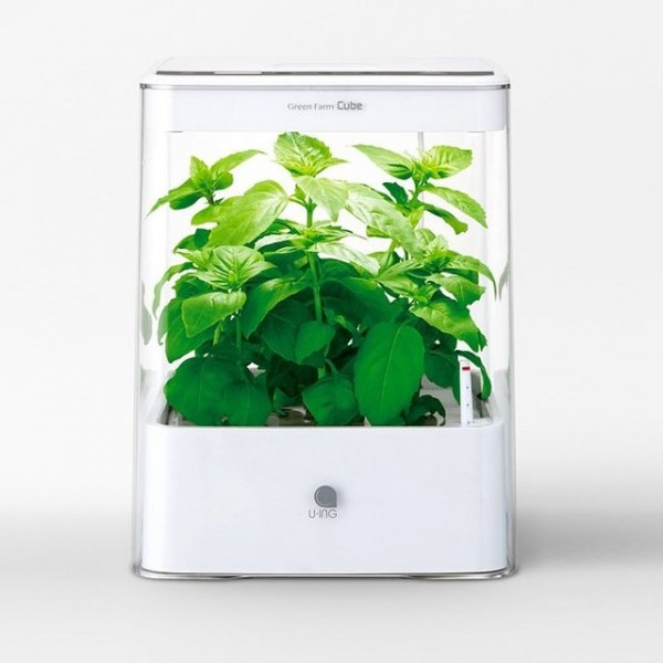 Cube Hydroponic Grow Box by U-ING