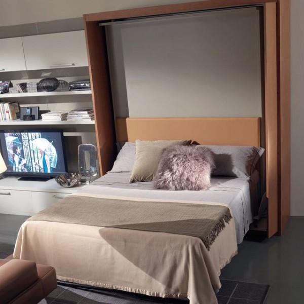 Revolving TV Murphy Bed