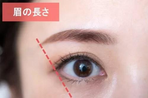 眉の長さのポイント