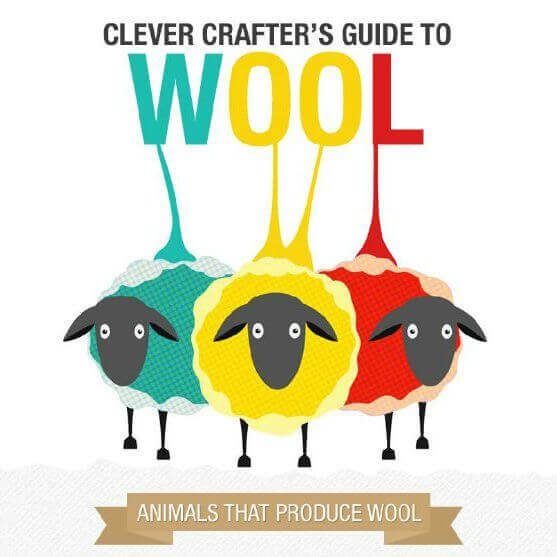 You'll definitely want to bookmark this handy infographic! I love having all the information I need in a handy at-a-glance reference. Find some fun wool facts (did you know camel hair is the warmest?!), a very handy yardage estimator for your next project, a wool weight cheat sheet, and a quick reference to specialty fibers. #petalstopicots