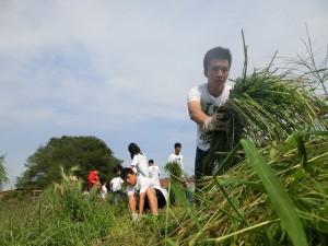 school group on farm2