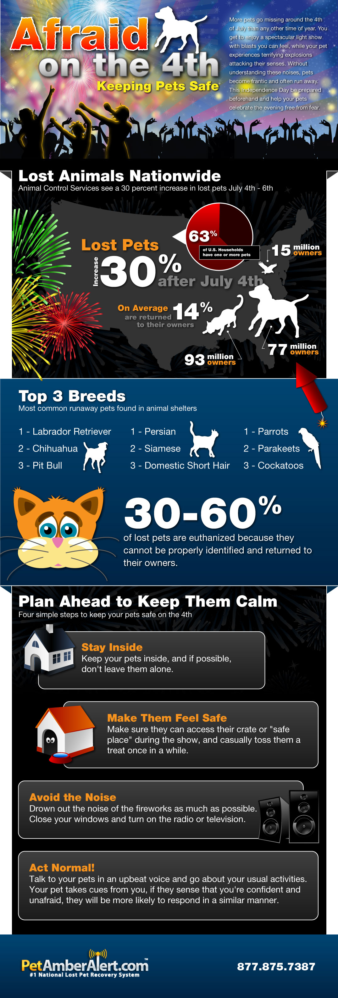 lost pets infographic