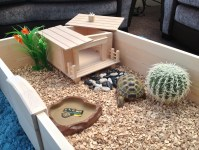 Tortoise House | www.pixshark.com - Images Galleries With ...