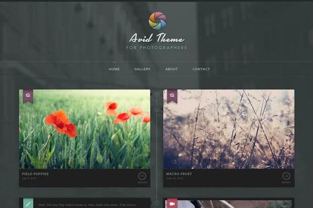WordPress Makes it Easier for Photogs to Build Sleek and Stylish Portfolios wordpressportfolio 2