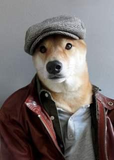 dogmenswear 2
