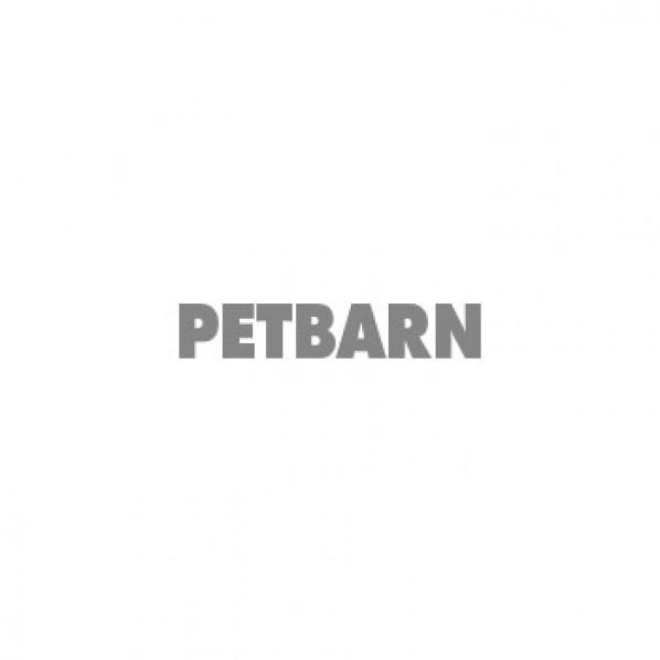Big Dog Barf Allergy Turkey Dog Food 3kg Petbarn