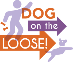 Dog on the Loose