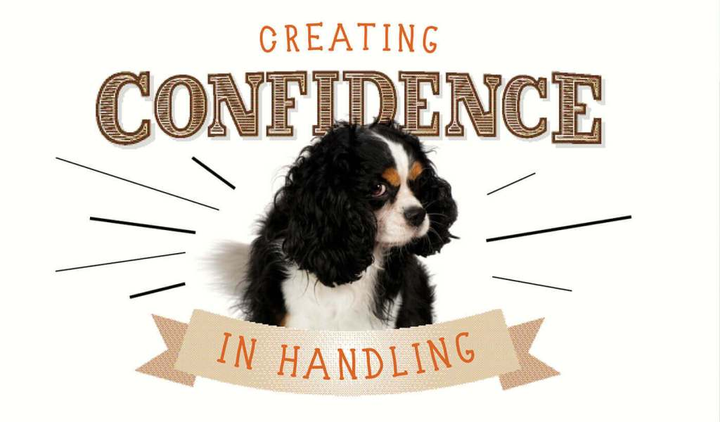 Creating Confidence in Handling