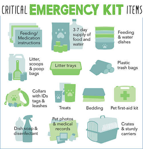 critical emergency kit items
