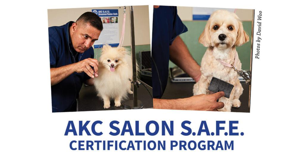 AKC Salon S.A.F.E. Certification Program