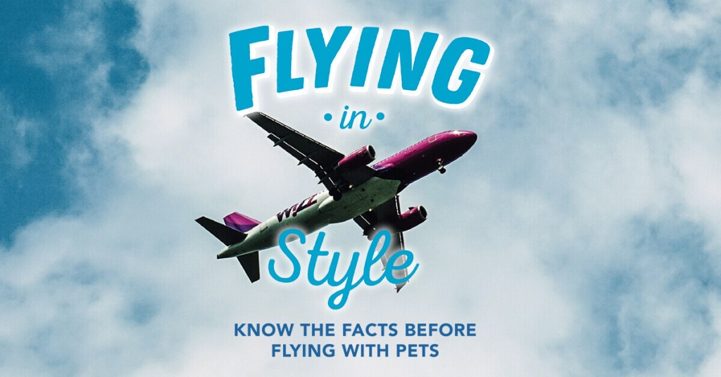 Flying in Style: Know the Facts Before Flying with Pets