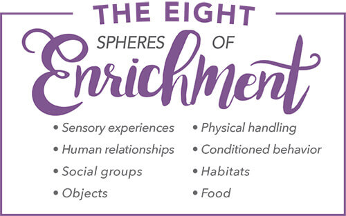 The Eight Spheres of Enrichment
