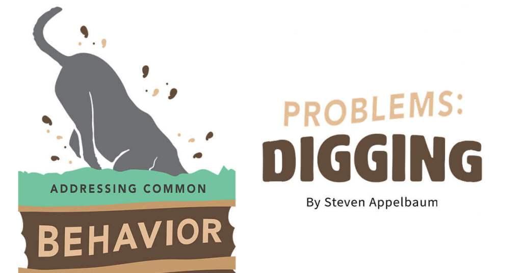 Addressing Common Behavior Problems: Digging