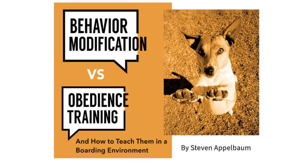 Behavior Modification vs Obedience Training and How to Teach Them in a Boarding Environment