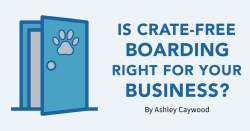 Is Crate-Free Boarding Right for Your Business?