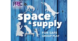 Space & Supply for Safe Group Play