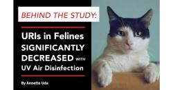 Behind the Study: URIs in Felines Significantly Decreased with UV Air Disinfection