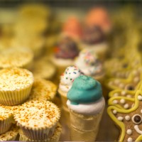Bakery Case-Close up