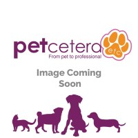 Buy harness dog coat from Petcetera