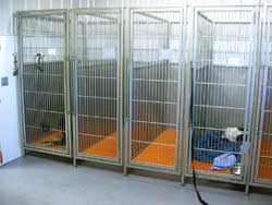 Large clean areas in which patients recover and are cared for