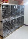 Kennel Areas