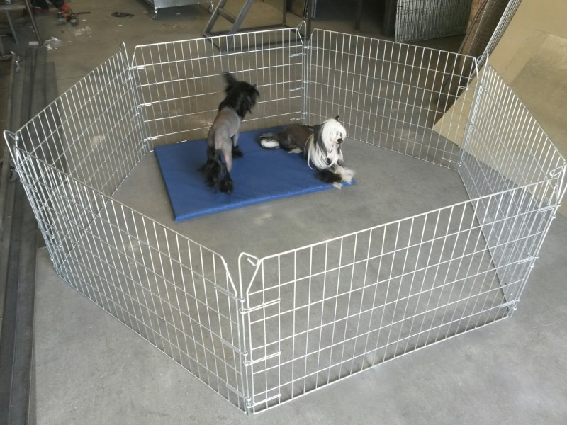 Bunny  Puppy Pen size small 600mmH with 6 panels