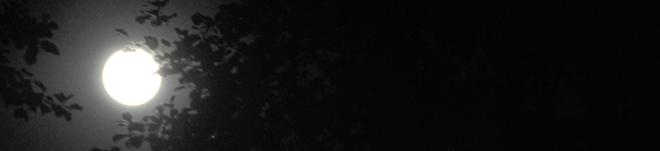 mondnacht02
