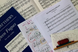 On the practice desk, all at once. Matthews Quartets 2 and 3 (which the Kreutzers are rehearsing this evening), his new version of Beethoven Op 119 (which arrived yesterday) , the beautiful new imprint of 15 Fugues from Fabers (which I edited), and my working copy of his 'Albumleaf for Sally'