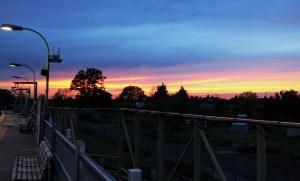 Sunset, Station, Oak Tree. West Harrow 30 10 15