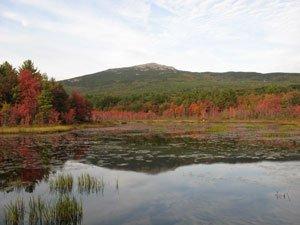 Mt Monadnock