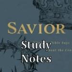 Savior study notes
