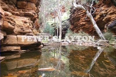 ALIGATOR GORGE - SOUTH AUSTRALIA R4