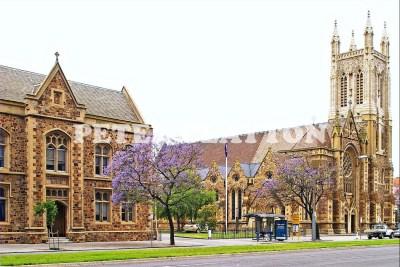 AUSTRALIA - ADELAIDE - FRANCIS XAVIER CATHEDRAL #2 R4