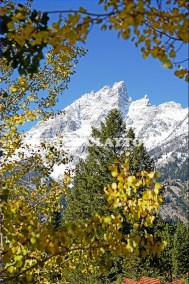GRAND TETON MTN  - WYOMING USA # 3 R4