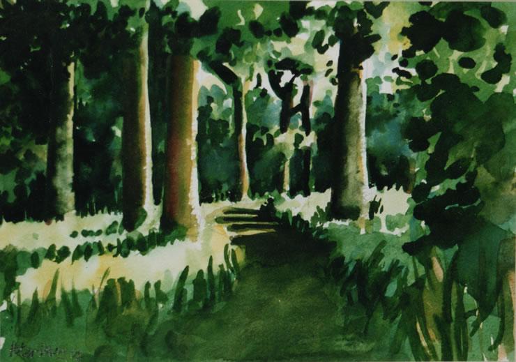 Peter Davey  Artist  Woodland Art Gallery