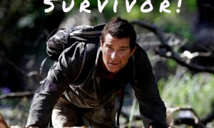 "Image of Bear Grylls in a jungle looking at the camera with the word ""Survivor"" above his head"