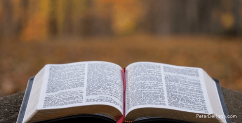 News Release:  Read the Bible in 2015