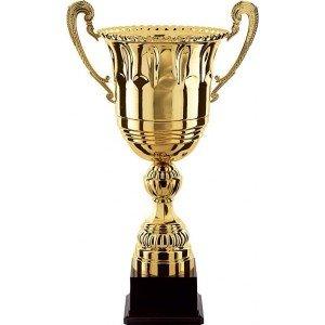 coupe champion