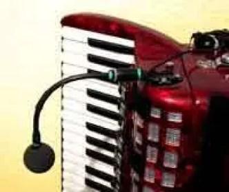 Bild Akkordeon mit Mikrofon