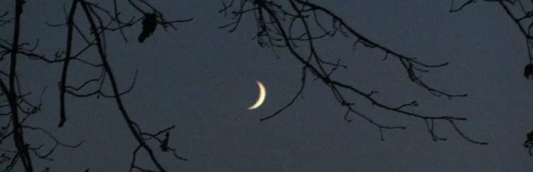 Mondschein Bild von Peter M. Haas