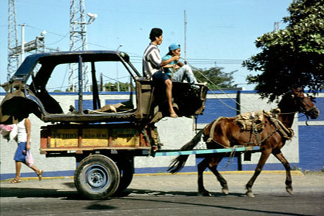 Horse and car in Managua