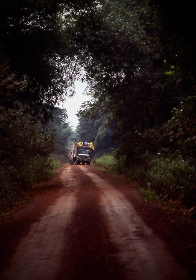 Truck broken down in the Okapi Nature Reserve in the DRC